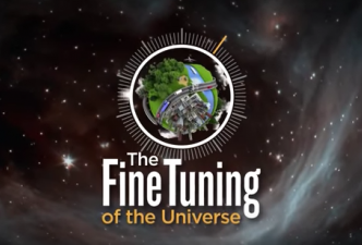 Read The fine tuning of the universe