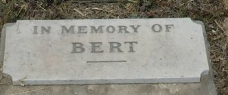 Read In memory of Bert