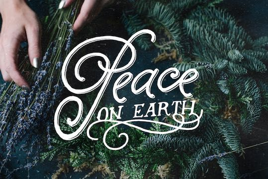 Image: Where's the peace this Christmas?